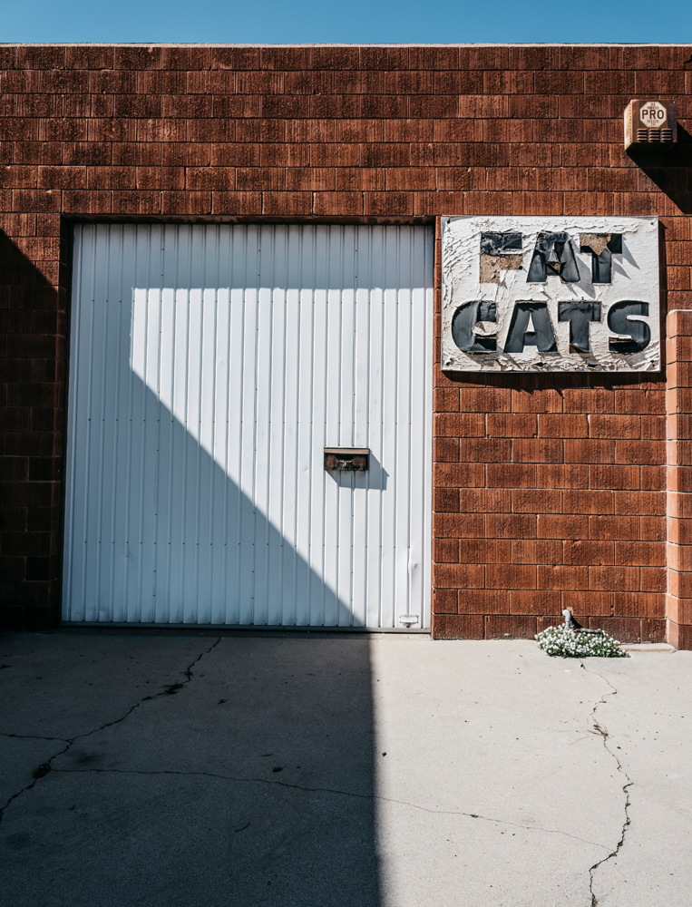 Minimal urban landscape photograph of architecture with a Fat Cats sign